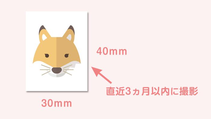顔写真のサイズと撮影のタイミング