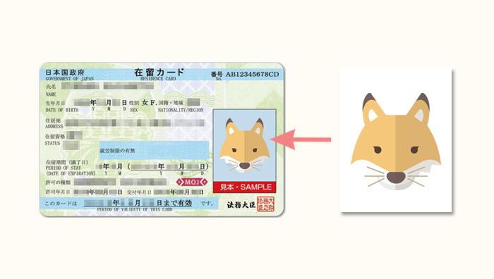 申請書の写真が在留カードに使われる