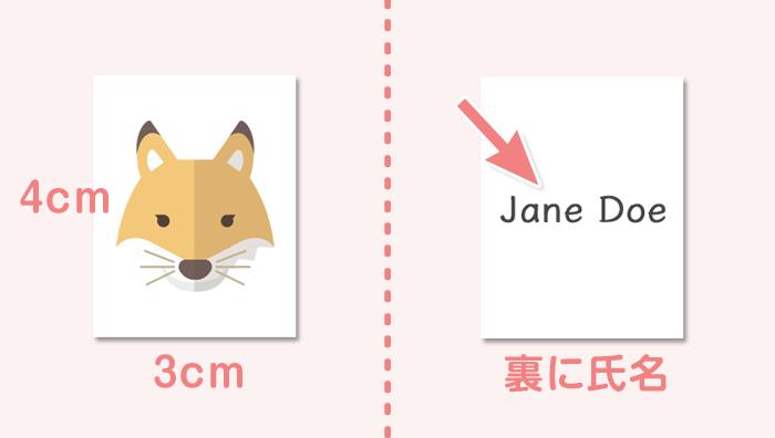 顔写真のサイズは4cm×3cmで氏名を記載する